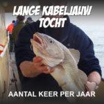 Zeevissen en een lange dag kabeljauw vangen
